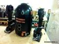 R2-Q5-paint-pintado-11