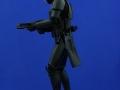 Stormtrooper Blackhole Premium Format 06