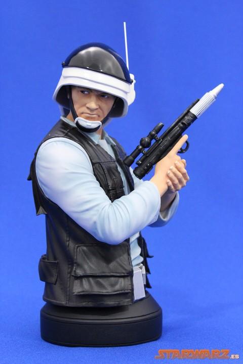 Review Gentle Giant Busto Rebel Fleet Trooper (PGM ...